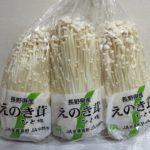 長野県産えのき茸3株 ☆コストコおすすめ商品